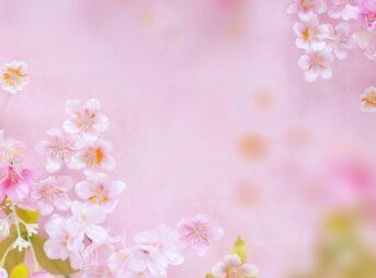 春に気をつけたい毛穴トラブルの対策 | 春は毛穴が詰まりやすい!?